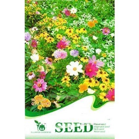 Semi di fiori in offerta confronta prezzi giardinaggio for Semi di fiori
